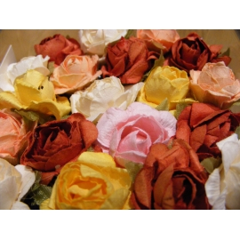 sachet de 12 roses